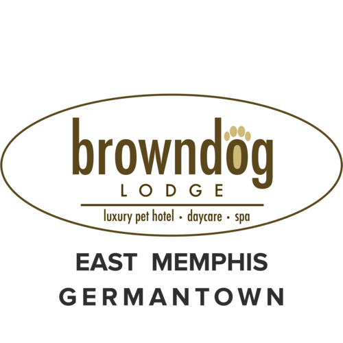 Browndog lodge logo