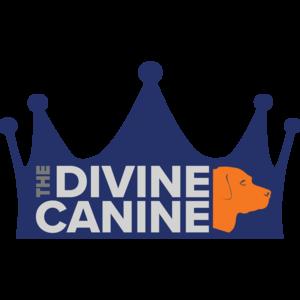 Dvine Canine logo