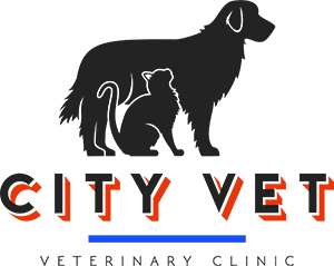 City Vet Veterinary Clinic