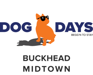dog days 2 locations