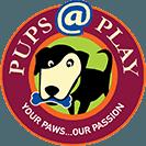 Pups@Play
