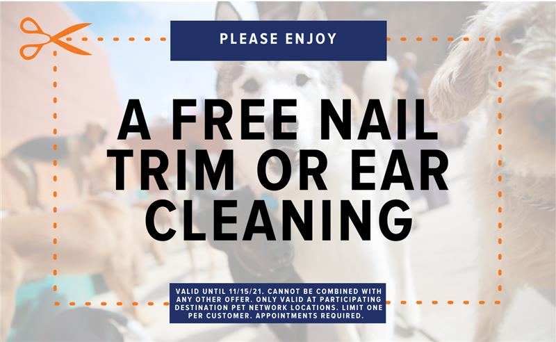 Coupon - Free nail trim or ear cleaning